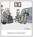 Lost the Spark Old Age Marriage Cartoon