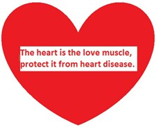 the Heart is the Love Muscle