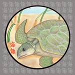 Sea Turtle Rescue Art