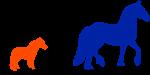 Horse Size - LCORL gene