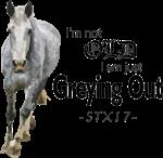 Grey gene - STX17