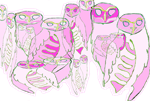 Owls Many of Pink