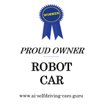 P11-02 Winner Robot Car