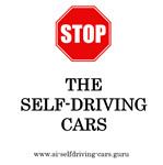 P19-02 Stop The Self-Driving Cars