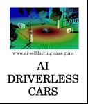 P29-01 AI Driverless Cars
