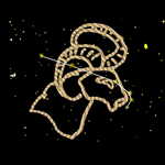 Aries Golden Zodiac Sign