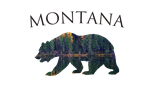 Montana Forest Bear