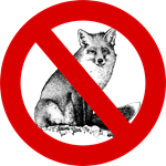 No Fox Given