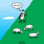 Hiking Sheep