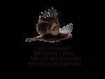 I am the Eagle