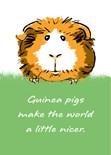 Guinea Pig Lover