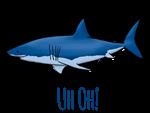 Uh Oh! SHARK
