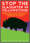 Stop the Slaughter in Yellowstone!