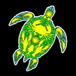 Sea Turtle Coral Reef Marine Life