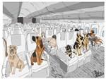 Dogs In Flight Ts