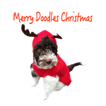 Merry Doodles Christmas