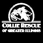 CRGI White Logo
