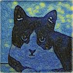 Van Gogh's Cat
