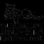Mountain Lion Logo