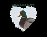 Mallard Love
