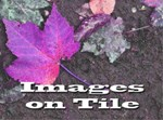 Images on Tile