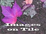 Images on Tile