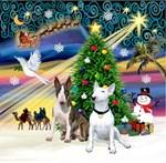 CHRISTMAS MAGIC<br>& 2 Bull Terriers