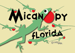 Magnetic Lizards of Micanopy