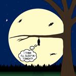 Bat Sleeping In