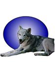 Friend Wolf