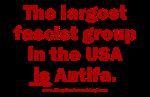 Fascist Antifa