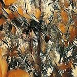 AVOCADO TREE ART