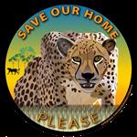 Save Our Home: Cheetah Rd