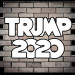 Trump 2020 Wall