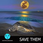 Sea Turtle Moon