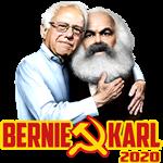 Bernie/Karl 2020