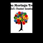 THE MORINGA TREE GOD'S GREATEST INVENTION