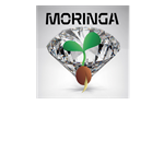 MORINGA SEEDLING WITH DIAMOND