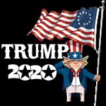Trump 2020 Uncle Sam