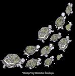 Turtles Swimming Up