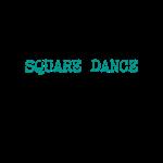 24/7/365 Square Dance