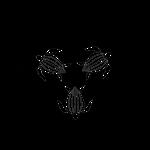 Save The Turtle Logo Black