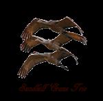 Sandhill Crane Trio