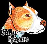 Bully Rescue
