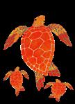 Three Sea Turtles