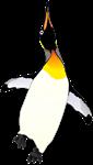 Dancing King Penguin