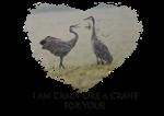 Crazy Like a Crane