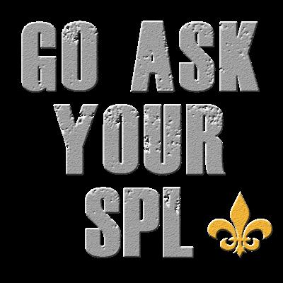 Go Ask Your SPL - Grey
