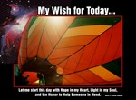 My Wish for Today...
