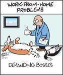 Work-from-Home Demanding Boss